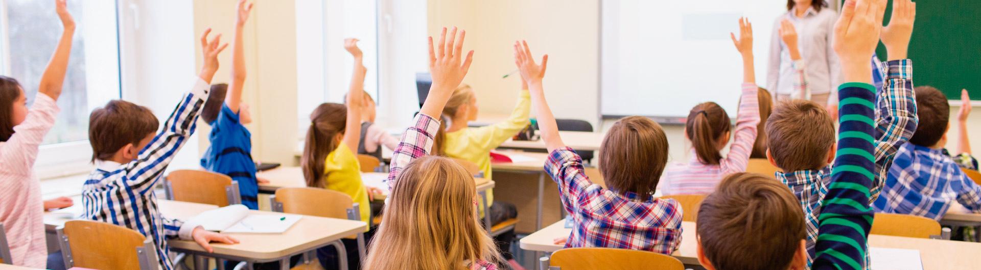 Diplomado en Gestión del Clima y la Convivencia Escolar E-learning