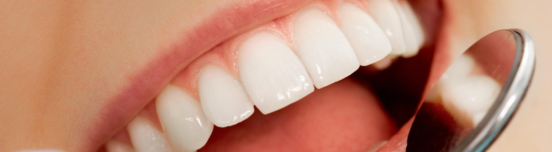 Programa de Especialización en Imagenología Oral y Maxilofacial